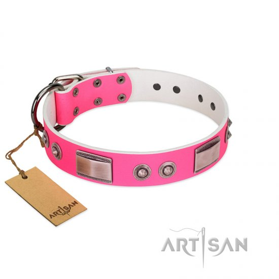 """Lady's Whim"" FDT Artisan Pink Leather Belgian Malinois Collar with Plates and Spiked Studs"