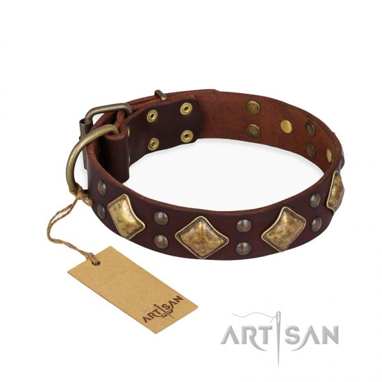 """Golden Square"" FDT Artisan Brown Leather Belgian Malinois Collar with Large Squares"