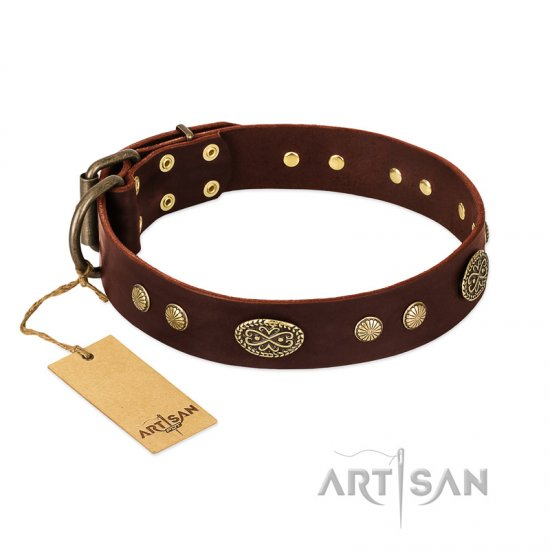 """Old-fashioned Glamor"" FDT Artisan Brown Leather Belgian Malinois Collar with Old Bronze Look Plates and Circles"