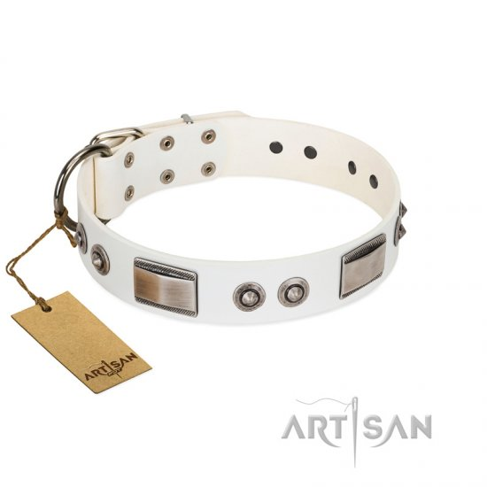 """Good-Luck Piece"" FDT Artisan White Belgian Malinois Collar Adorned with Chrome Plated Studs and Plates"