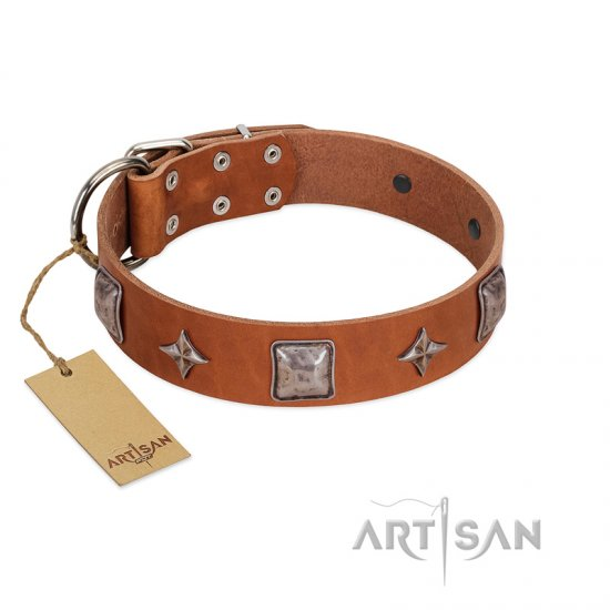 """Lucky Star"" FDT Artisan Tan Leather Belgian Malinois Collar with Silver-Like Embellishments"