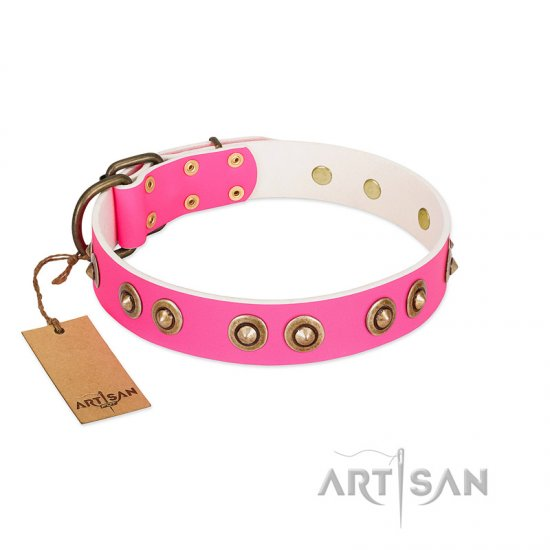 """Bright Delight"" Pink FDT Artisan Leather Belgian Malinois Collar with Large Old Bronze-like Plated Studs"