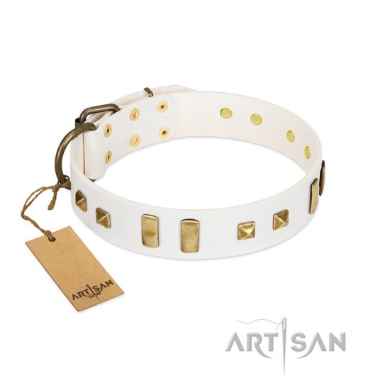 """Wintertide Mood"" FDT Artisan White Leather Belgian Malinois Collar with Old Bronze-like Plates and Studs"