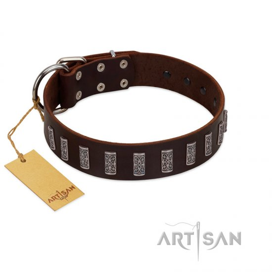 """Brown Lace"" Handmade FDT Artisan Brown Leather Belgian Malinois Collar for Everyday Walks"
