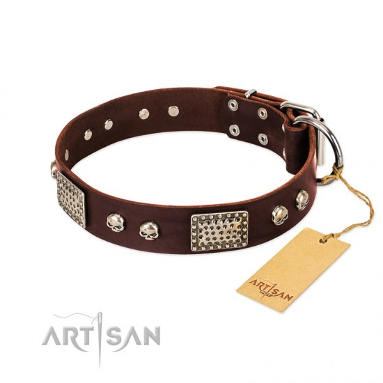 """Pirate Skull"" FDT Artisan Brown Leather Belgian Malinois Collar with Old Silver Look Plates and Skulls"