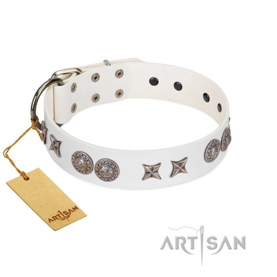 """Seventh Heavens"" FDT Artisan White Leather Belgian Malinois Collar with Chrome-plated Stars and Engraved Brooches"