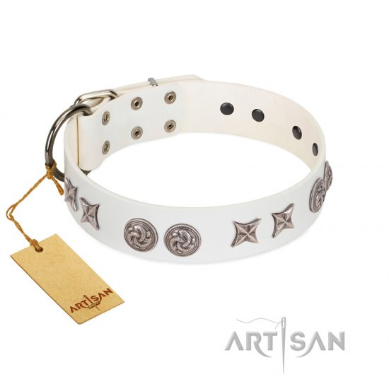 """Galaxy Hunter"" FDT Artisan White Leather Belgian Malinois Collar with Engraved Brooches and Stars"