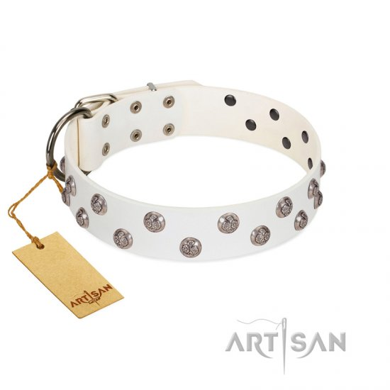 """Wild Flora"" FDT Artisan White Leather Belgian Malinois Collar with Silver-like Engraved Studs"