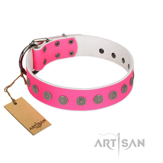 """Pop Star"" Handcrafted FDT Artisan Pink Leather Belgian Malinois Collar with Round Plates"