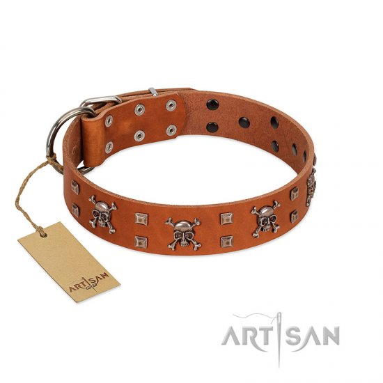 """Rebellious Nature"" FDT Artisan Tan Leather Belgian Malinois Collar Embellished with Crossbones and Square Studs"
