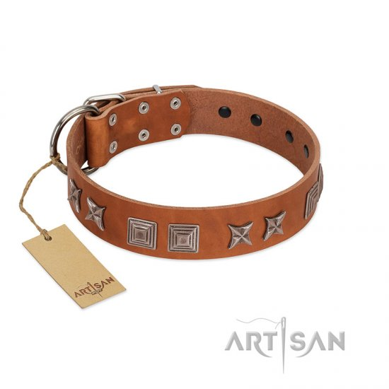 """Antique Figures"" FDT Artisan Tan Leather Belgian Malinois Collar with Silver-like Engraved Plates"