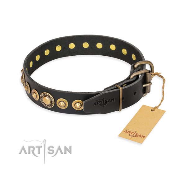 """Gold Mine"" FDT Artisan Black Leather Belgian Malinois Collar with Amazing Bronze-Plated Round Studs"