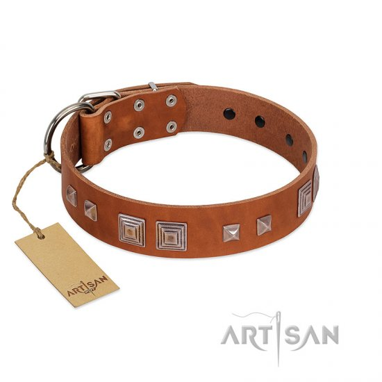 """Egyptian Gifts"" Handmade FDT Artisan Tan Leather Belgian Malinois Collar with Chrome-plated Pyramids"