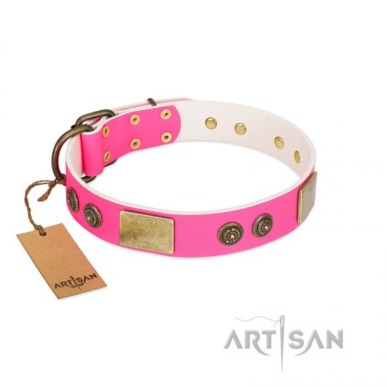 """Queen's Whim"" FDT Artisan Fancy Walking Pink Leather Belgian Malinois Collar Adorned with Old Bronze-like Plates and Studs"