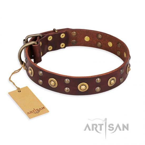 """Caprice of Fashion"" FDT Artisan Brown Leather Belgian Malinois Collar with Round Decorations"