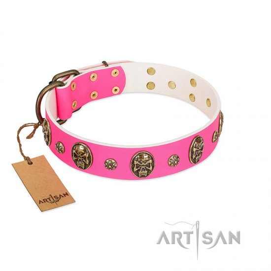 """Fashion Show"" FDT Artisan Pink Leather Belgian Malinois Collar with Old Bronze-like Skulls and Studs"