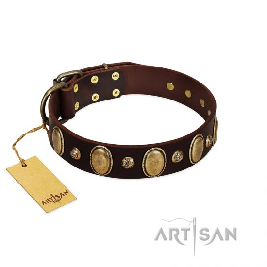 """Natural Grace"" FDT Artisan Handmade Decorated Brown Leather Belgian Malinois Collar"