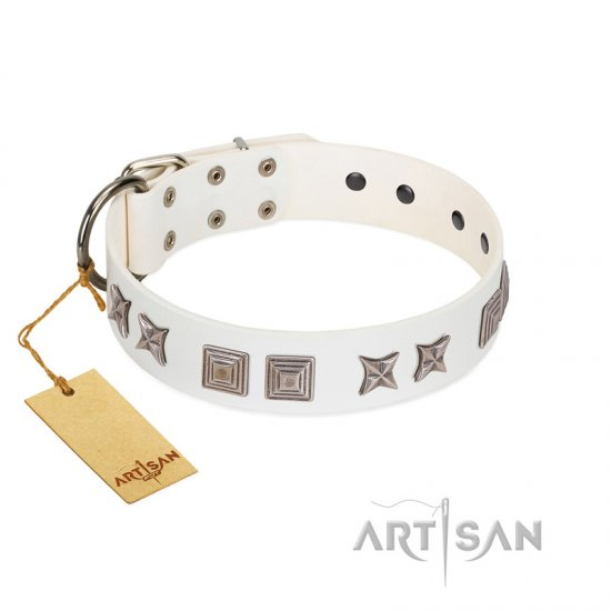 """Mister Perfection"" Designer Handmade FDT Artisan White Leather Belgian Malinois Collar"
