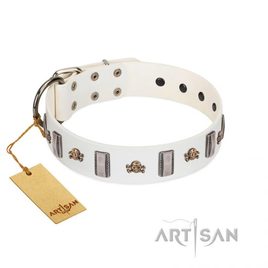 """Mysterious Voyage"" FDT Artisan White Leather Belgian Malinois Collar with Engraved Plates and Skulls"