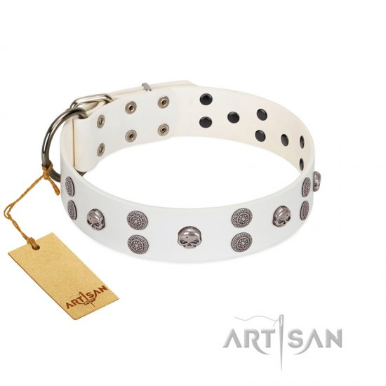 """Edgy Look"" FDT Artisan White Leather Belgian Malinois Collar with Silver-like Skulls"