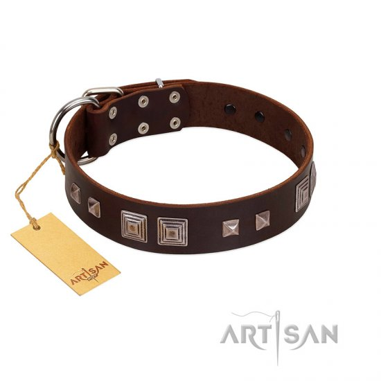 """Object of Virtu"" FDT Artisan Brown Leather Belgian Malinois Collar with Old Silver-like Square Studs and Pyramids"