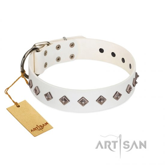 """Snowy Day"" Stylish FDT Artisan White Leather Belgian Malinois Collar with Small Dotted Pyramids"