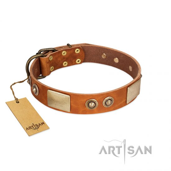 """Perfect Blend"" FDT Artisan Tan Leather Belgian Malinois Collar 1 1/2 inch (40 mm) wide"