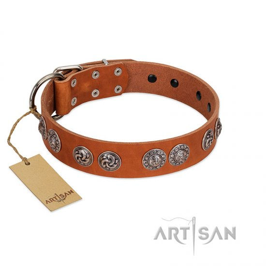 """Woofy Majesty"" FDT Artisan Tan Leather Belgian Malinois Collar with Round Silver-like Plates"