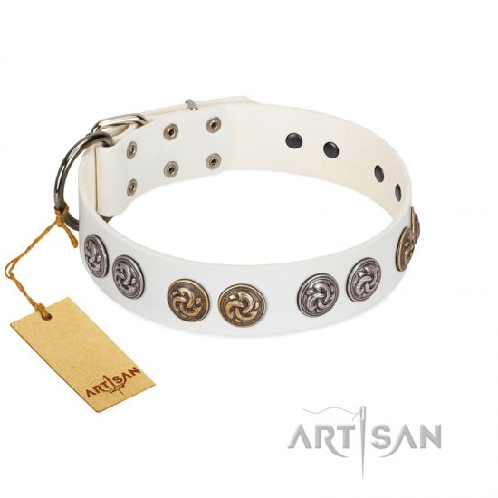 """White Moonlight"" FDT Artisan White Leather Belgian Malinois Collar with Elegant Decorations"