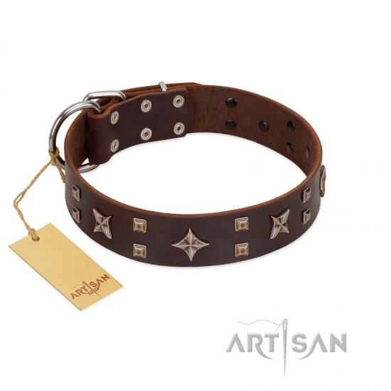 """Stars in Sands"" Modern FDT Artisan Brown Leather Belgian Malinois Collar with Studs and Stars"