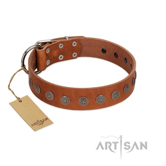 """Lucky Star"" Handmade FDT Artisan Designer Tan Leather Belgian Malinois Collar with Round Plates"