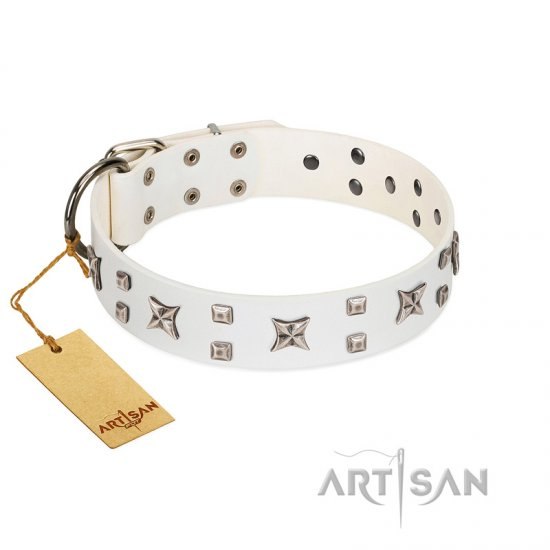 """Star Patrol"" FDT Artisan White Leather Belgian Malinois Collar Adorned with Stars and Studs"