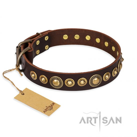 """Ancient Warrior"" FDT Artisan Fancy Leather Belgian Malinois Collar with Old-Bronze Plated Decorations"
