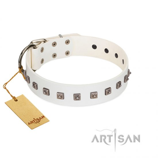"""True Grace"" Premium Quality FDT Artisan White Designer Leather Belgian Malinois Collar"