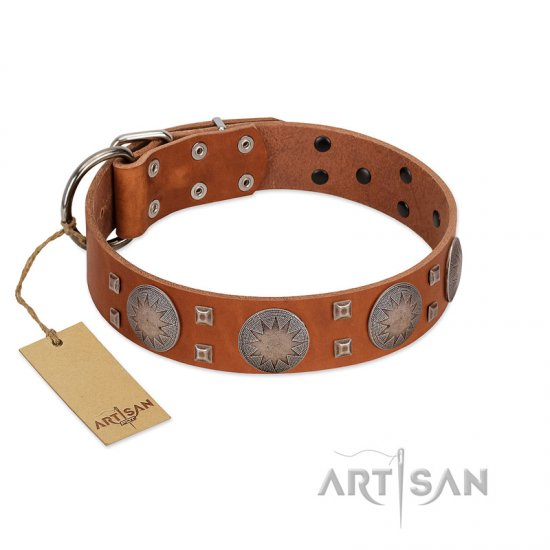 """Sun Rise Noon"" FDT Artisan Tan Leather Belgian Malinois Collar with Unique Design"