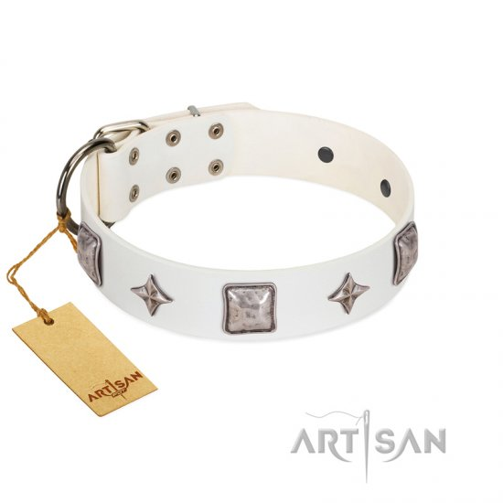 """Vanilla Ice"" FDT Artisan Handmade White Leather Belgian Malinois Collar with Silver-like Adornments"