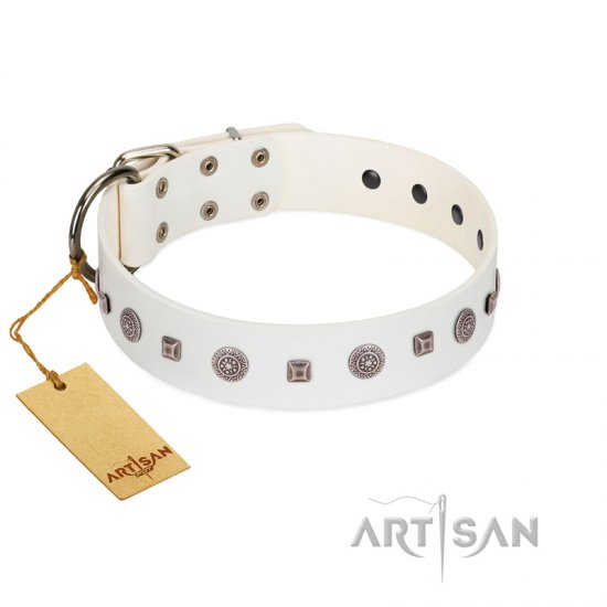 """Drops on Snow"" Handmade FDT Artisan White Leather Belgian Malinois Collar Adorned with Silver-Like Studs"