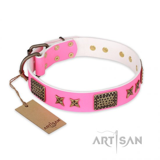 """Tender Pink"" FDT Artisan Leather Belgian Malinois Collar with Old Bronze Look Stars and Plates"