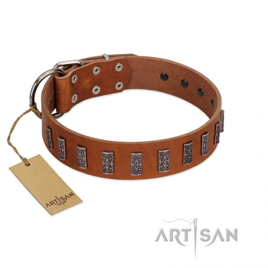 """Silver Century"" Fashionable FDT Artisan Tan Leather Belgian Malinois Collar with Silver-Like Plates"