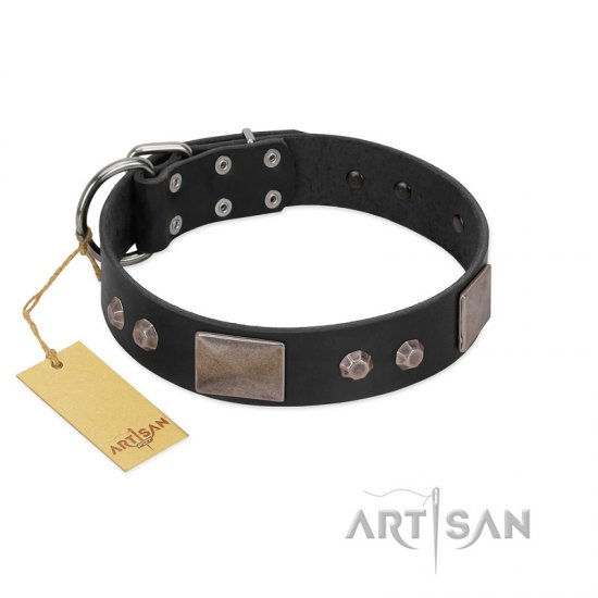 """Square Stars"" Modern FDT Artisan Black Leather Belgian Malinois Collar with Square Plates and Studs"