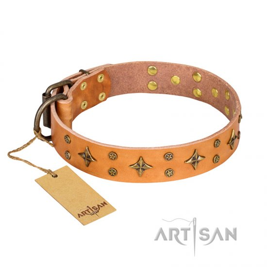 'Top-Flight' FDT Artisan Adorned Tan Leather Belgian Malinois Collar