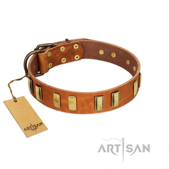 """Olive Slice"" FDT Artisan Tan Leather Belgian Malinois Collar with Engraved and Smooth Plates"