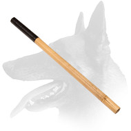 Bamboo Training Stick Perfect for Belgian Malinois Training