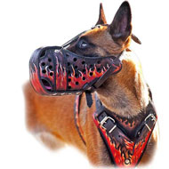 Hand painted Leather Harness for Belgian Malinois
