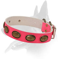 'Eccentric Style' Belgian Malinois Pink Leather Dog Collar