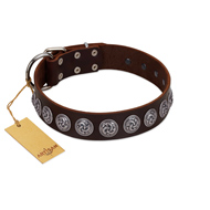 """Charming Circles"" FDT Artisan Brown Leather Belgian Malinois Collar with Silver-like Studs"