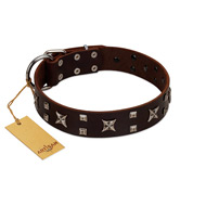"""Bigwig Woof"" FDT Artisan Brown Leather Belgian Malinois Collar with Chrome Plated Stars and Square Studs"