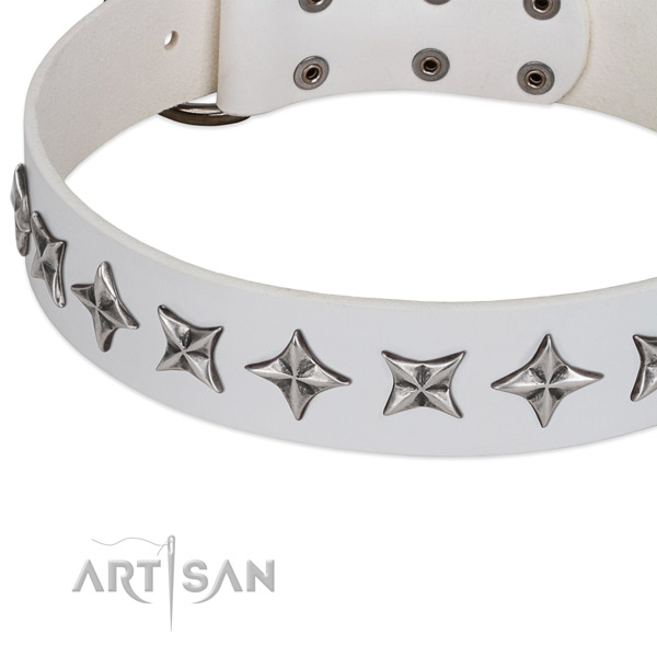 Fancy walking embellished dog collar of reliable natural leather