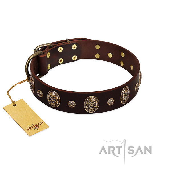 Stunning full grain leather collar for your dog