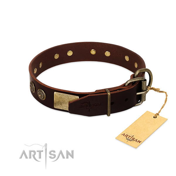Strong buckle on leather dog collar for your canine